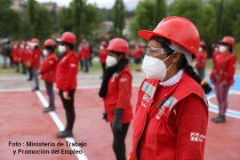 Promulgan Ley que promueve la inserción laboral de mujeres víctimas de violencia en programas públicos