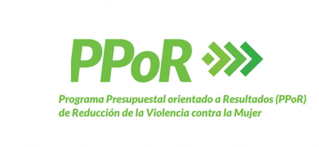 Aprueban disposiciones para la articulación y actuación conjunta y la Agenda de Trabajo 2021 para la implementación del Programa Presupuestal orientado a Resultados de Reducción de la Violencia contra la Mujer (PPoR RVcM)
